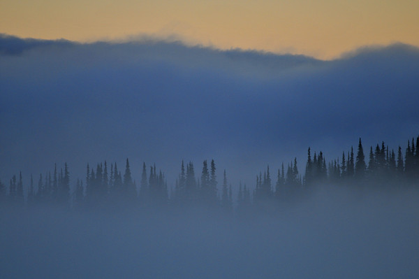 ...the mists hung down their gauzy curtains... Mark Twain