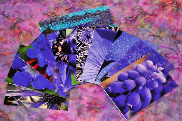 lavender-hued greeting cards from my garden photographs