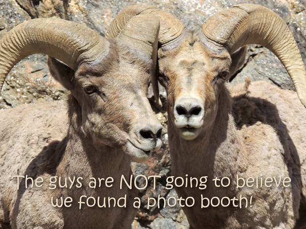 The guys are NOT going to believe we found a photo booth!