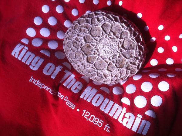 Sewemup Mesa Snowflake Rock