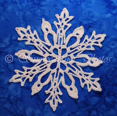 Sophronia Snowflake