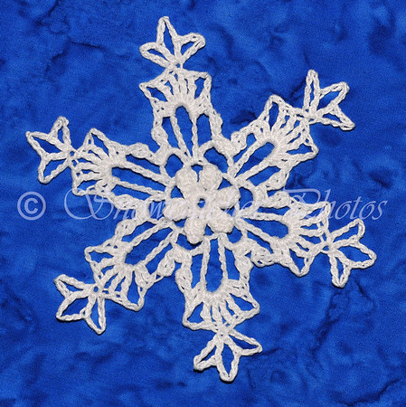 Wind River Snowflake
