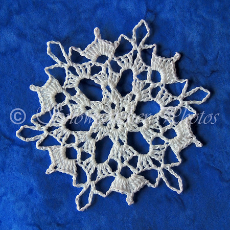 A Snowflake for Lisa