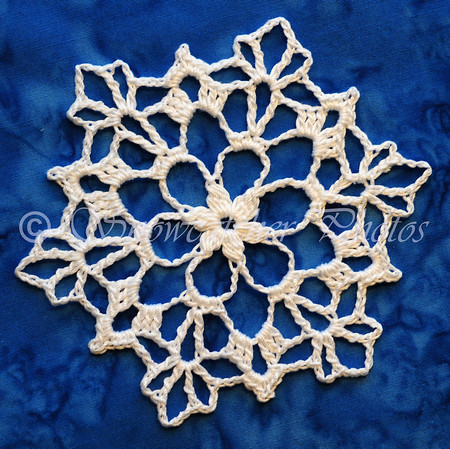 Dusty Snowflake