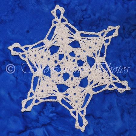 Hollyhock snowflake