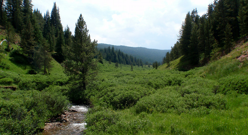 Stafford Creek, east side of Vail Pass