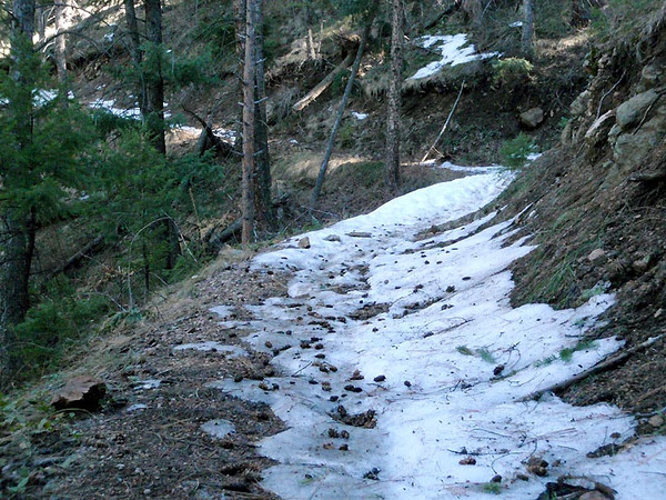 Colorado Trail, 15 March 2012