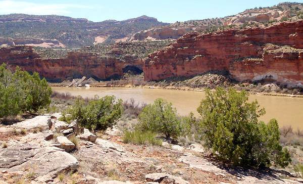Colorado River from Horsethief Bench, 31 March 2012