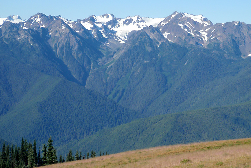Looking west across Olympic National Park from the summit of Hurricane Ridge.