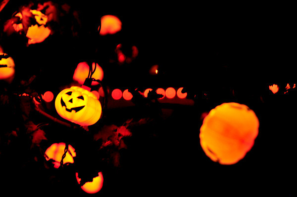 Pumpkin Lights