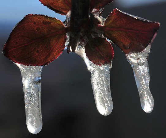 Icy Air Bubbles