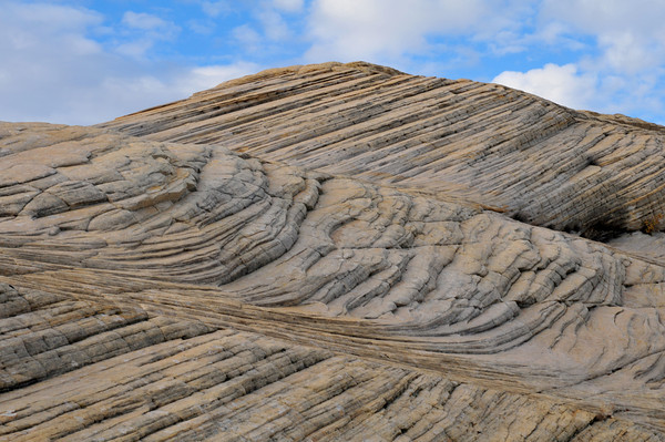 petrified white dunes