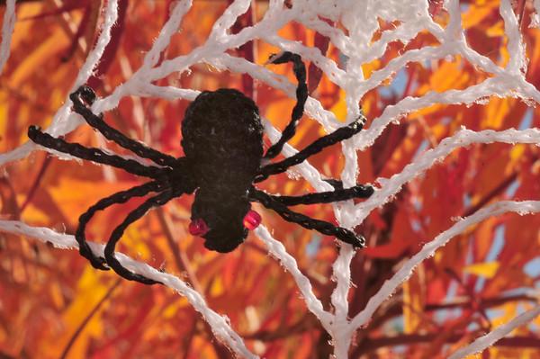 amigurumi spider in snowflake web