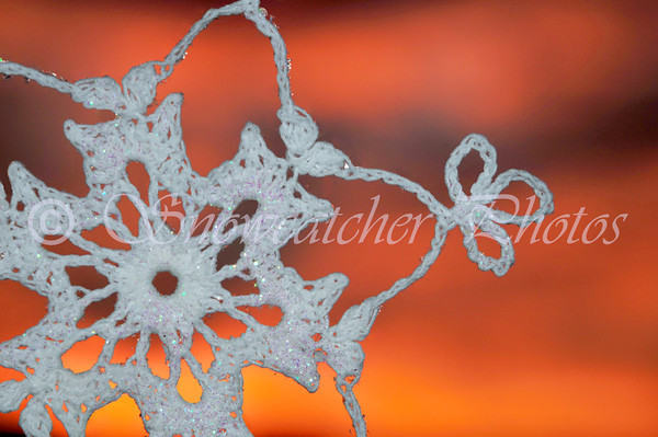Midnight Oil Snowflake at Sunset on Halloween Night