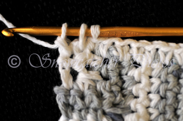 yarn over and bring through two loops on hook