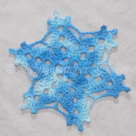 Blizzaster Snowflake
