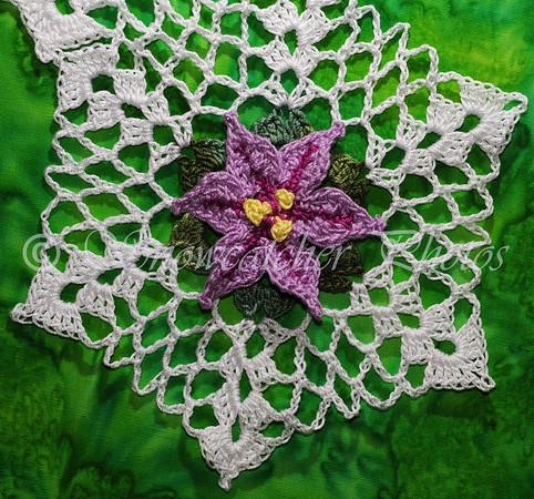 Spring Star Flower Snowflake