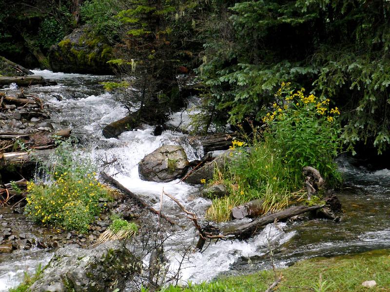 East Fork Dallas Creek, San Juan Mountains, Colorado