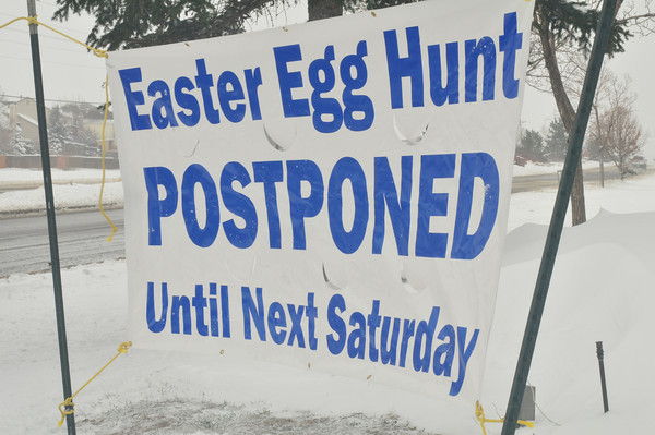 or hide white eggs...